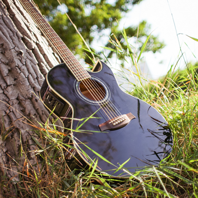Black guitar leaning against tree in the grass
