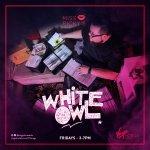 DJ White Owl